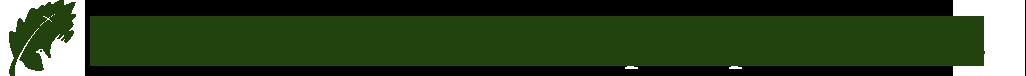 logo-sticky4