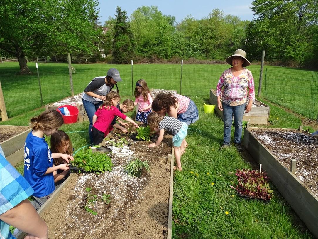 04.30.17 (2) Church School plants garden