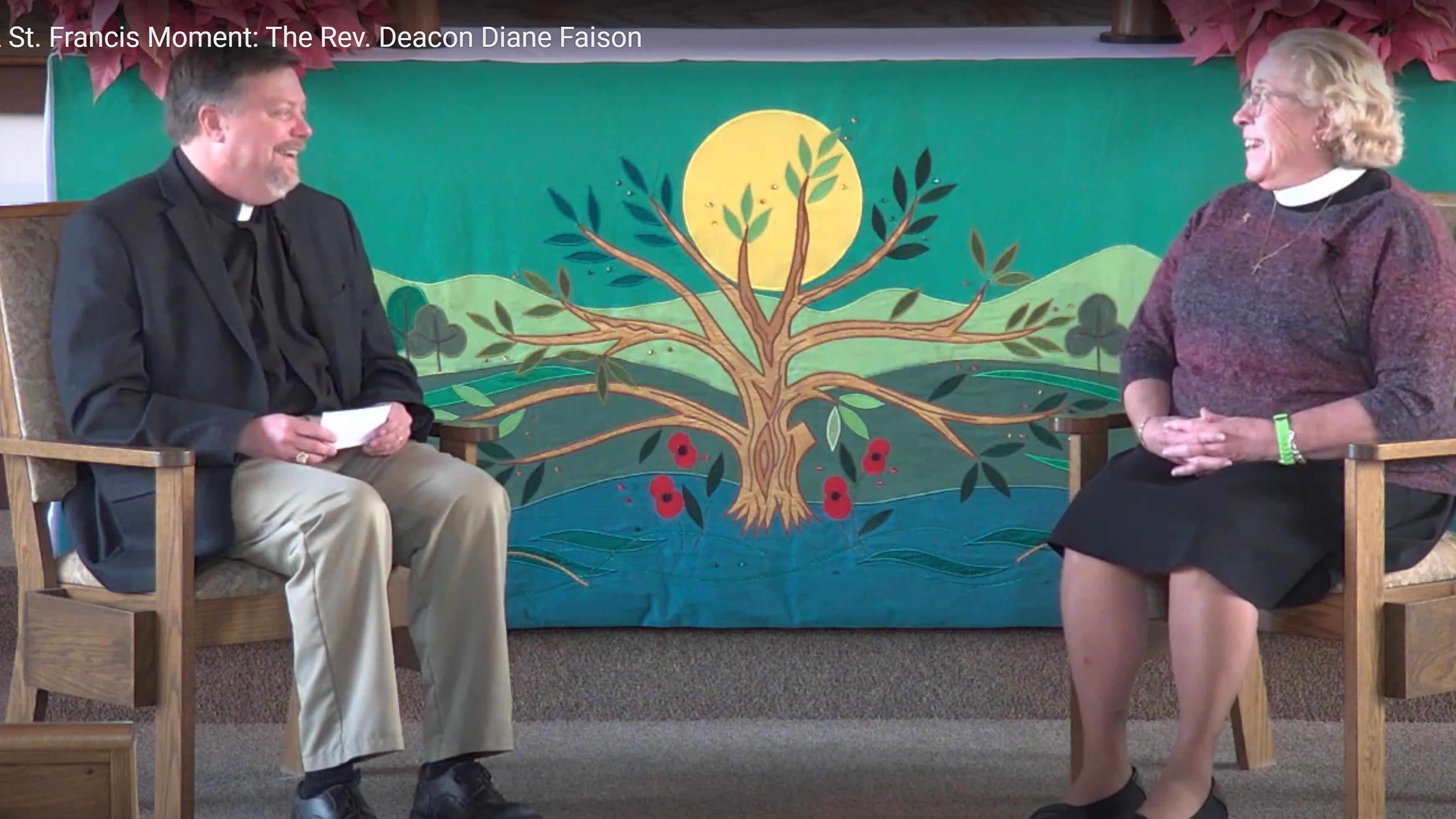St. Francis Moment Diane Faison